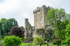 Castle in the Trees (gabi-h) Tags: blarneycastle ireland spring trees greenery architecture gabih sky clouds tourists historical legend kisstheblarneystone