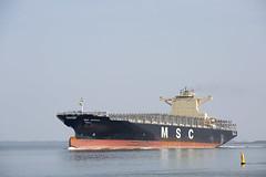 MSC ANTIGUA (angelo vlassenrood) Tags: ship vessel nederland netherlands photo shoot shot photoshot picture westerschelde boot schip canon angelo walsoorden cargo container mscantigua