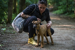 Bibi0516-2027 (adam.leaf) Tags: canon 6d 24105l leafling forest dog
