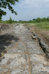 Main Street, Dion  (9).JPG (tobeytravels) Tags: alexanderthegreat alexander3rd macedon macedonia thucydides brasidas orpheus hellenistic cranicos leake