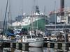 Polarcus, 15-4-2018 (kees.stoof) Tags: polarcus amsterdam marina noord scheepswerf shipyard damen