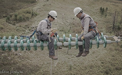 lineman (cheropereyra) Tags: liniero lineas lineman altatensión altura trabajo work