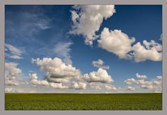 Avril léger (afantelin) Tags: burgundy bourgogne yonne compigny nuage champ ciel sky agriculture