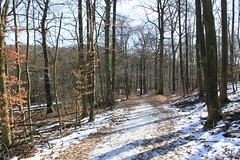 """Tierpark Bielefeld • <a style=""""font-size:0.8em;"""" href=""""http://www.flickr.com/photos/82496916@N07/40011781030/"""" target=""""_blank"""">View on Flickr</a>"""