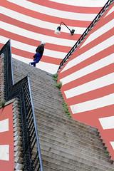 Siamo ad una svolta (meghimeg) Tags: 2018 genova scalinata scala stairs strisce stripes uomo man lampione lamp rosso red rot
