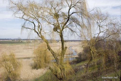 Зимно Річка Луга InterNetri Ukraine 130