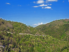 18050718737valtrebbia (coundown) Tags: gita tour statale stradastatale 45 ss45 valtrebbia trebbia natura boschi verde fiume