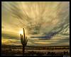 (Ken Mickel) Tags: arizona clouds cloudscape cloudy desert estrellla goodyeararizona kenmickelphotography landscape landscapedesert outdoors sky sunsets backlighting backlightingphotography backlit backlitphotography nature photography silhouette silhouettes sunset goodyear unitedstates us
