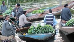 Greens (Nagarjun) Tags: floatingvegetablemarket flowers dallake kashmir srinagar commerce trade veggies kohlrabi dawn morning sunrise green
