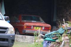 1981 Datsun Stanza A10 (jeremyg3030) Tags: 1981 datsun stanza a10 nissan cars japanese