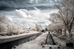 Water Challenge (Lolo_) Tags: canal infrared provence ir 415nm carpentras mallemort mérindol infrarouge edf trees arbres
