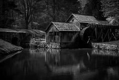 Mill and Pond Along Blue RIdge Parkway, Virginia (nsandin88) Tags: mill a7rii reflection bandw exploration sony canon explore blueridgeparkway monotone canonl sonya7rii virginia nationalpark va tombstone blueridge blackandwhite park rural rain canonlens nps