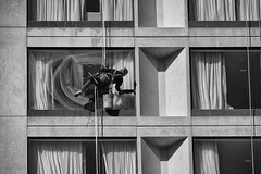Window Washing (flashfix) Tags: may142018 2018inphotos ottawa ontario canada nikond7100 40mm nikon flashfix flashfixphotography portrait candid monochrome blackandwhite windows westin repetition worker atwork lines suds bucket streetphotography