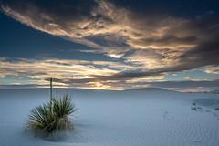 Sunset at White Sands (Trent9701) Tags: newmexico trentcooper whitesandsnationalmonument desert dunes roadtrip sanddunes travel