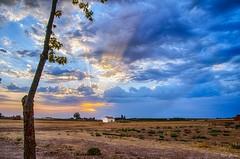 Atardeceres en La Mancha (Peideluo) Tags: sunset sky clouds landscape sun cielo hierba árbol paisaje campo