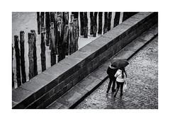 De l'autre côté des brise lames ! (bertranddorel) Tags: couple chien people personne homme man humain human noiretblanc bnw bw nb wb blackandwhite bretagne france europe contrast ngc urban city ville street sreetphoto rue lignes graphique graphisme blancoynegro biancoenero white walking nikon nikkor world femme woman parapluie umbrella mono pavés briselame sea mer sable beach plage manche baie intramuros saintmalo
