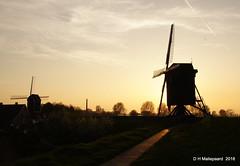 Zonsondergang  Heusden (ditmaliepaard) Tags: zonsondergang sunset heusden wallen molens mills bomen trees
