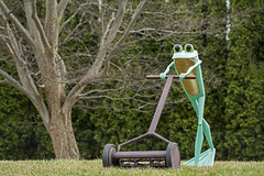 Ribbit the Exhibit at Dow Gardens, Midland Michigan (TAC.Photography) Tags: 2018yip sculpture frog froggy lawnmower lawnmowing metalfrogdisplay art yardart metalyardart dowgardens midland tacphotography tomclarknet