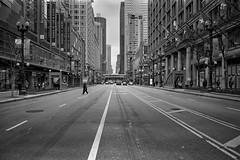 State Street - That Empty Street_.jpg (Milosh Kosanovich) Tags: silverfast block37 fujimicrofine11 statestreet chicago bwfilm empty chicagophotographicart epsonv750pro macysstatestreet nikonf100 miloshkosanovich chicagophotoart kodakdoublex5222 chicagophotographicartscom mickchgo manwalking