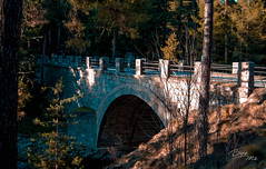 Sierra de Gredos. (Batide Machado) Tags: sunshine springtime shadows macromondays wet españa aribus 7dwf sunset water sierradegredos gredos puente bridge mountains montaña snow sun green tree flowers art nature park landscape summer trees river old