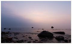 Sunrise Baltic Sea (Dieter Gora) Tags: sunrisesonnenaufgang ostsee baltic sea schönhagen schleswigholstein andersteilküste earlymorning mefo meerforellenanglermeerforellen violett dunstnebelüberdemmeer mangenta