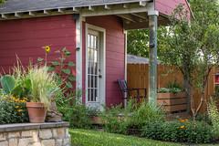 Barn red (betoeg) Tags: shed sunflower yard buda earthbox us texas austin