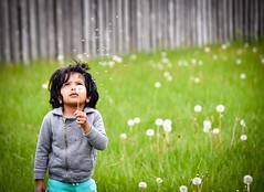 Sending wishes.. (sruthyanu) Tags: d5500 nikon child chils sendingwishes wishes throughherlense flickr season may spring dandelion green outside outdoors baby girl kid