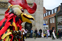 The Dorking Rampant Roosters (Lord Cogsby) Tags: roosters rampant dorking