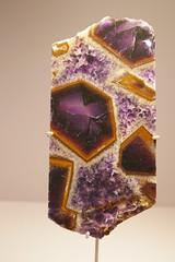 Quartz améthyste & goethite - Brazil (Monceau) Tags: quartz amethyst goethite brazil crystal galeriedeminéralogieetdegéologie museum mineralogy geology