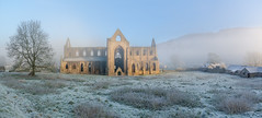 Tintern abbey. Mounouthshire, Wales (Ed.Moskalenko) Tags: tintern monmouthshire wales unitedkingdom europe abbey church ruin fog forest mist winter ice snow trees sunrise travel tourism countryside country