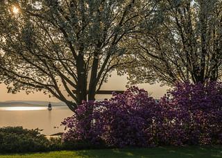 Springtime on the Burlington Vermont waterfront