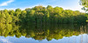 Mirror (mpakarlsson) Tags: canon70200f28lll canon70200 canon llens 5dmark3 5dmarkiii 5diii 5dm3 sweden höjentorp skaraborg axvall varnhem lake mirror tree trees forest sky spring reflection wide wideangle panorama pano photomerge lightroom