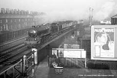07/01/1961 - Hessle Road, Hull, East Yorkshire. (53A Models) Tags: britishrailways lner thompson b1 460 61289 steam passenger yorkshirepullman hessleroad hull east yorkshire train railway locomotive railroad
