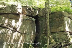 Worlds End SP (44) (Framemaker 2014) Tags: worlds end state park sullivan county forksville pennsylvania endless mountains united states america