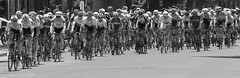 2018_05_19_8182-PS-crop-BW (DA Edwards) Tags: california amgen northern tour amgentoc toc bicycle bike race sacramento 18th street heat peloton motorcycle cameraperson insane spring 2018 da edwards photography monochrome blackandwhite
