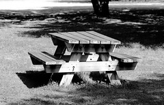 Table à manger (ZUHMHA) Tags: labarben zoo zoodelabarben france nature animal campagne campain banc table piquenique picnic arbre tree pelouse grass herbe monochrome