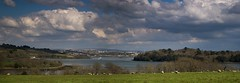 Town and Country (suerowlands2013) Tags: riverlynher incecastle jupiterpoint hmsbrecon plymouth dartmoor spring sheep countryside river clouds cornwall devon panoramicview pano stitchedimage