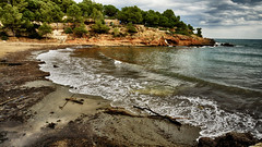 Cala Pixavaques (candi...) Tags: playa cala calapixavaques lametllademar arboles costa cielo nubes arena algas agua naturaleza nature sonya77 airelibre