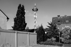 Maypole (gambajo) Tags: 1year1town1lens brühl project blackandwhite blackwhite black white outdoors public maypole garage sky tree x100s fujix100s fujifilmx100s