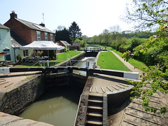 P1020954 (KENS PHOTOS2010) Tags: birds countryside canals inns j walks landscape nature pubs sunshine swans views river water locks