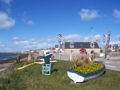 Welcome to Findhorn, Moray Coast, April 2018 (allanmaciver) Tags: findhorn welcome moray coast scotland boat wee blue seat houses fishing village traditional tight community heritage history allanmaciver