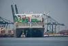Ever Golden_DVL4960 (larry_antwerp) Tags: evergolden evergreen container 9811012 ship schip vessel schelde scheldt port haven antwerpen antwerp antwerptowage