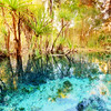Bitter Springs, NT (Louise Denton) Tags: nt northernterritory darwin explore 4wd bush outback bitter springs freshwater mataranka swim clear crystal water pandanus fresh refreshing