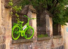 Green (akk_rus) Tags: 2470 28 nikkor nikkor247028 nikon d800 nikond800 romania roumanie румыния city europe европа brasov брашов