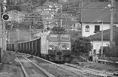 stresa novembre '17 #37 (train_spotting) Tags: stresa mir mercitalia mercitaliarail trenitialiacargo ticargo divisionecargo tigre tigrone e652048 nikond7100