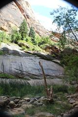 IMG_3728 (Egypt Aimeé) Tags: narrows zion national park canyons pueblos utah arizona