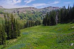 Granite Canyon (akortrey) Tags: grandtetonnationalpark wilderness wyoming tetoncresttrail mountains
