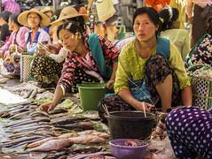 fish market (cih94) Tags: inle lake fishing fish people myanmar mountains woman colourful market scene burma ethnics အင်းလေးကန် explorer