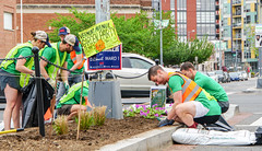 2018.05.06 Vermont Avenue, NW Garden - Work Party, Washington, DC USA 01774