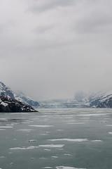 MS Westerdam - 7 Day Alaska May 2018 - Glacier Bay-289.jpg (Cindy Andrie) Tags: alaska hollandamerica d800 nature britishcolumbia beach victoriabc westerdam glacierbay landscape nikon cindyandrie canada andrie glaciers nikond800 cindy